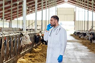Milking Barn